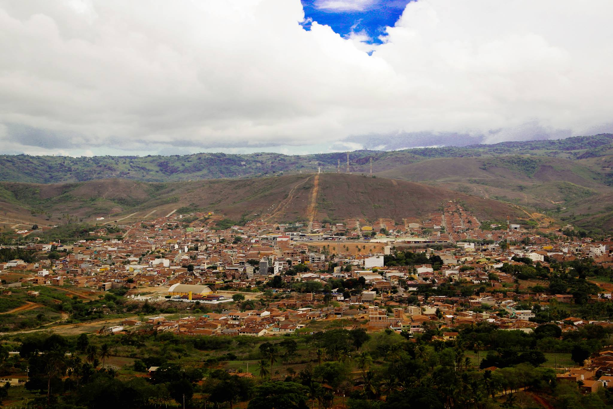 Pombos Pernambuco fonte: pernambuconoticias.com.br