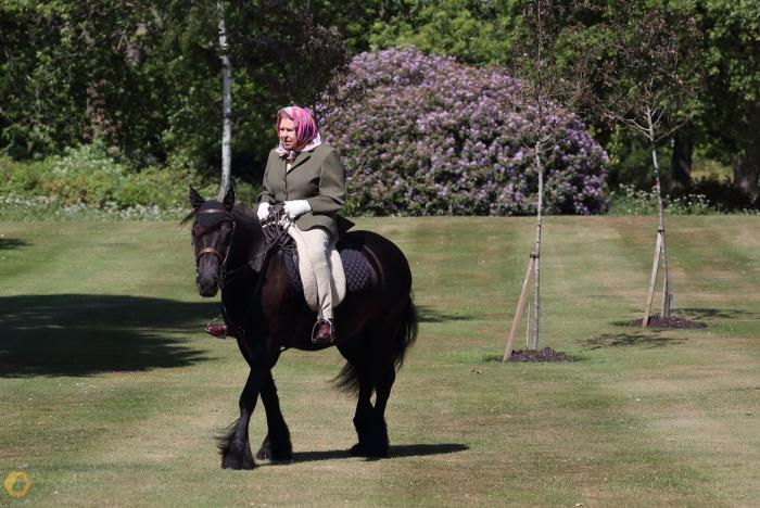 Rainha Elizabeth é vista andando a cavalo em seu castelo na Inglaterra