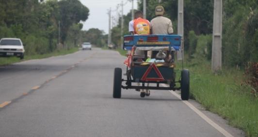 Abaixo-assinado online pede o fim das carroças em Pernambuco
