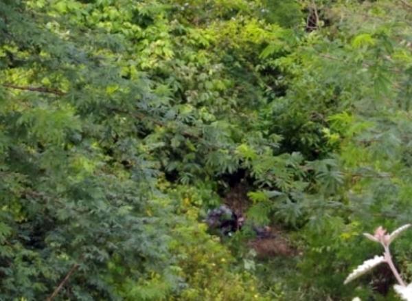 Pesqueira: Corpo de homem é encontrado carbonizado em matagal