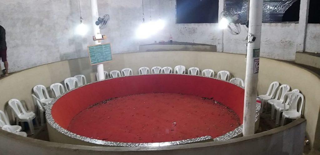 Rinha de briga de galo descoberta também em Arcoverde